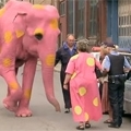 Just for laughs: pink elephant prank