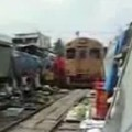 Train passing through crowded clums