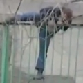 Drunk guy versus the fence