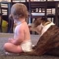 Dog Gives Baby A Tongue Bath