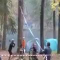 Lumberjack Nearly Killed By Falling Tree