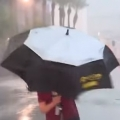 Reporter's Puny Umbrella is No Match for a Monsoon
