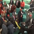 Massive brawl breaks out in Ugandan parliament