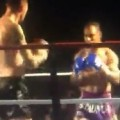 Fighter's Epic Spinning Kick Knockout