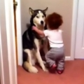 Baby scared of vacuum, runs to dog for help