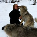 Lady Reunites with wolves